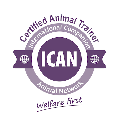 ICAN Logo badge Trainer